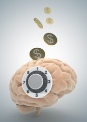 brain safe money and finance concept