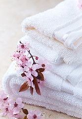 Cotton Bath Mitts and Towel