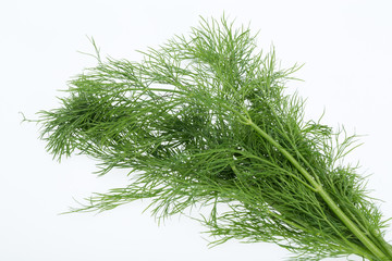 Green dill isolated on white background.