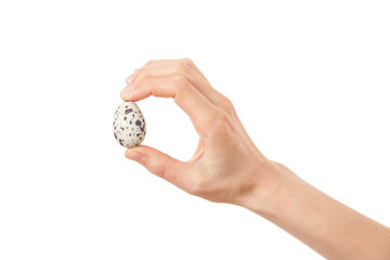 Quail eggs in hand, isolated on white