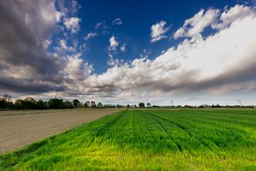 pianura padana campi 2853