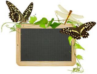 ardoise campagnarde bordée de vignes, papillons...