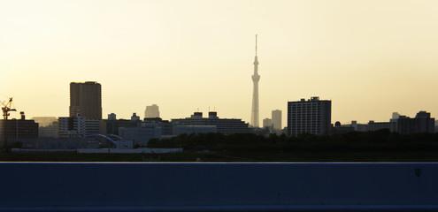 東京スカイツリーと夕焼け