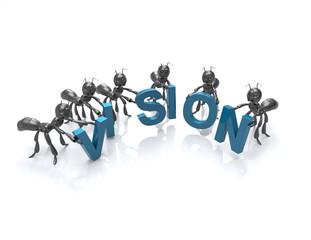 Vision Team-concept