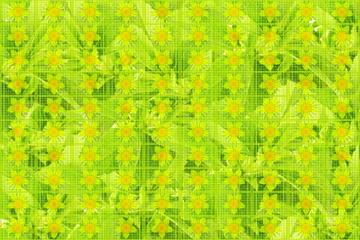 flower texture background design