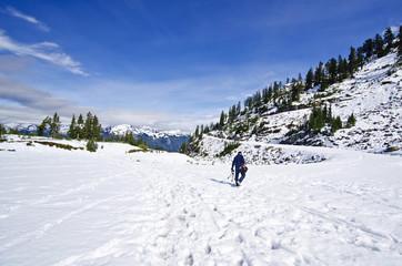 A Trail near Mt Shuksan