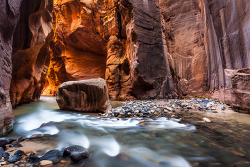Aluminium Prints Magenta Wall street in the Narrows, Zion National Park, Utah