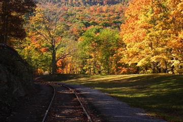 Railroad Track Scenic