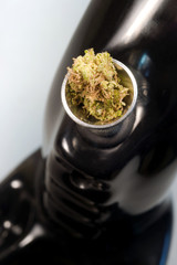 Water Pipe Green Buds Marijuana Plant Flowers Cannibis Natural