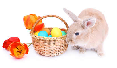 Cute rabbit and basket with Easter eggs, isolated on white