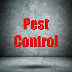 Pest Control concrete wall