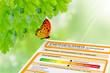 Energieausweis - Klimaschutz
