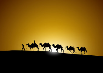 Foto op Plexiglas Marokko camel caravan