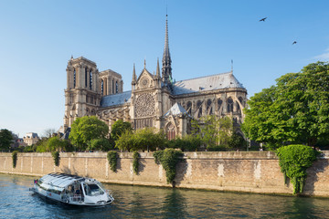 Wall Mural - Notre Dame de Paris, France