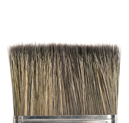 Bristle of brush