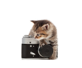 kitten and vintage camera isolated on white background