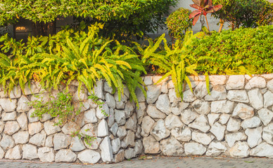 Wall Mural - Decorative garden