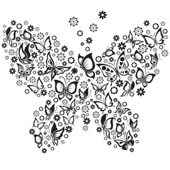 Vector Illustration of  black and white butterflies