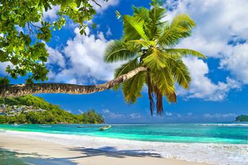 Wall Mural - idyllic tropical scenery - Seychelles