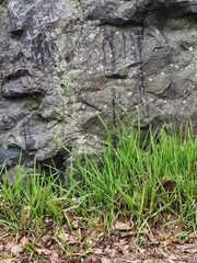 grass and stone