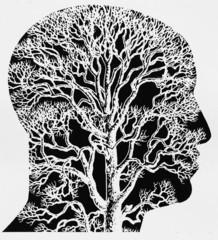 Kopf mit Baumstruktur