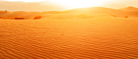 Fotorolgordijn Zandwoestijn Sunset in desert