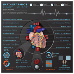 Heart And Blood System Medical Infographic Infochart