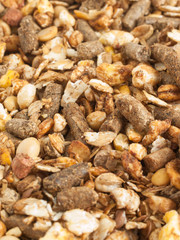 high quality natural sportive  muesli background. for horse. clo