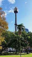 Fototapete - Centrepoint, Sydney
