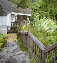 Staircase leading towards a house, Jamaica