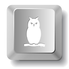 Owl. Vector computer key.