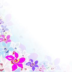 blüte,blume,floral,design,pflanze,ecke,vektor,bunt,