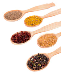 Poster Kruiden 2 Different spices in spoons isolated on white