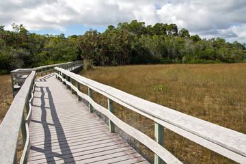 Everglades, Mahogany Hammock Trail