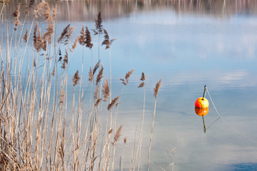 orange buoy on the shore of a lake