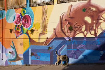 Mural decorating the streets of Valparaiso