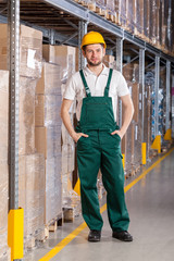 Warehouseman standing in storage