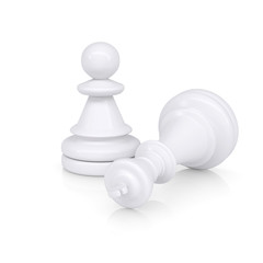White defeated chess king is near pawns