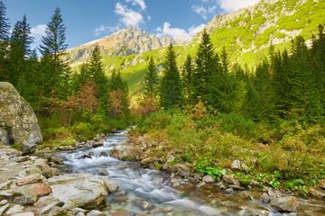 The Roztoka Stream. The High Tatras, Carpathian Mountains.