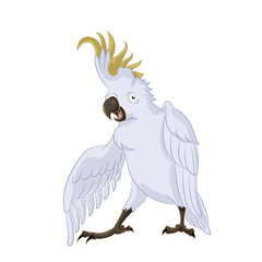 Cockatoo,