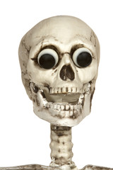 Skeleton Head with Eyeballs