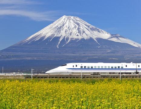 菜の花畑を疾走する新幹線
