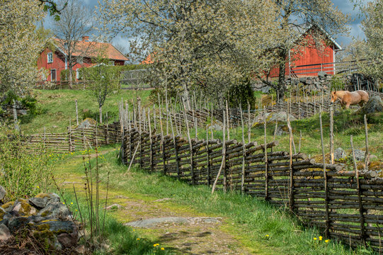 Idyllic Sweden at springtime - early May in Småland