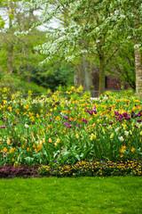 Spring garden landscape