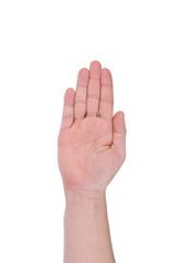 Man's hand.