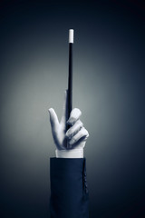 Wall Mural - High contrast image of magician hand with magic wand