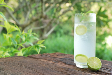Full glass of fresh cool tonic with lime fruits isolated on wood
