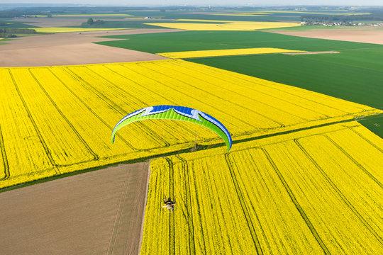 champs de colza vue aérienne