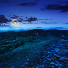 path on top of mountain meadow at night