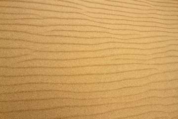 Textures Created in Sand Waves